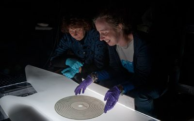 From the Collections, Sound Recordings Heard for the First Time
